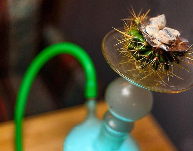 BUZZ bar кальян на кактусе